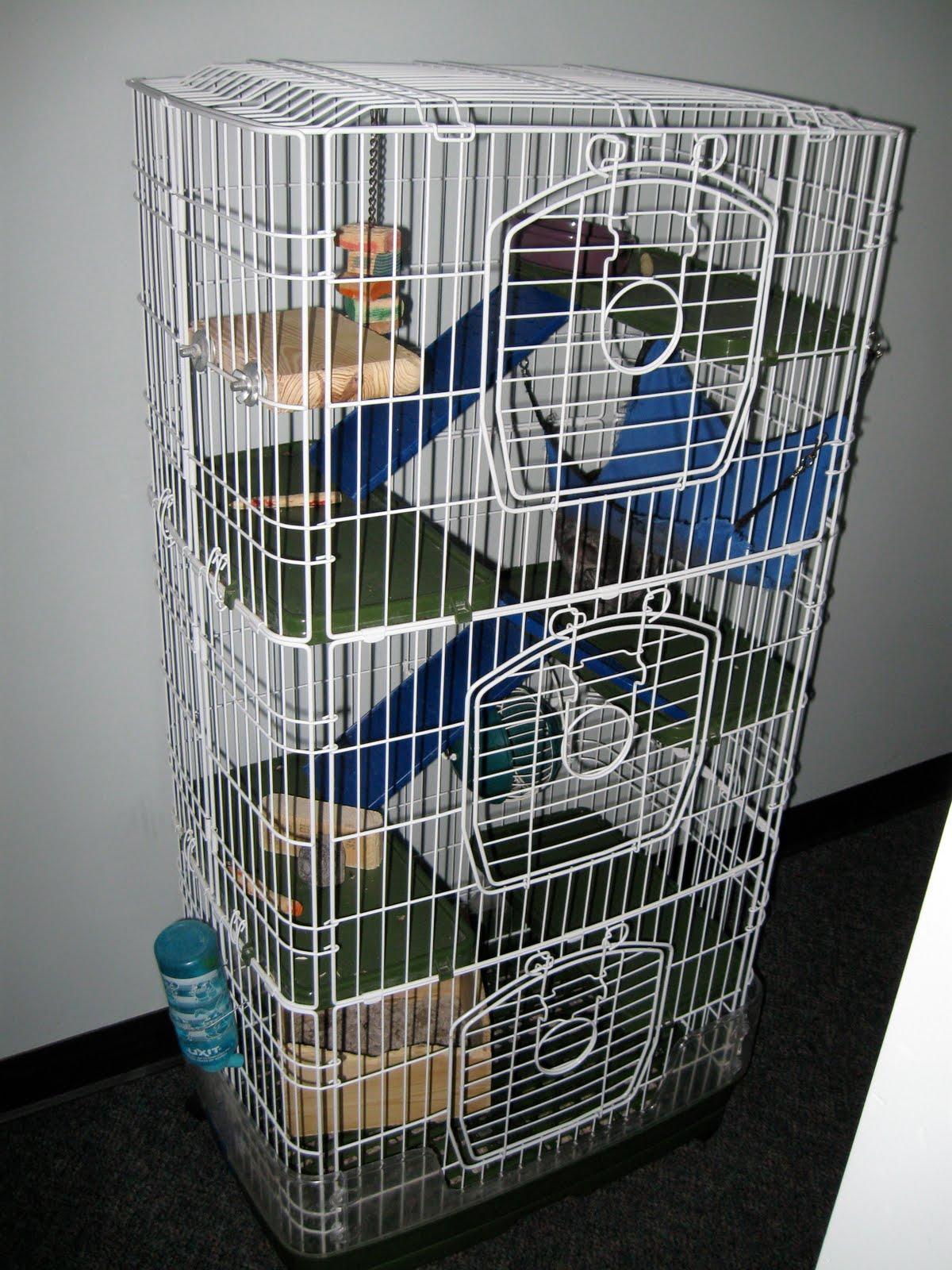 chinchilla cage - photo #16