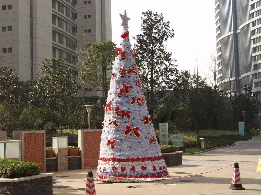 [PJW+Christmas+tree+]