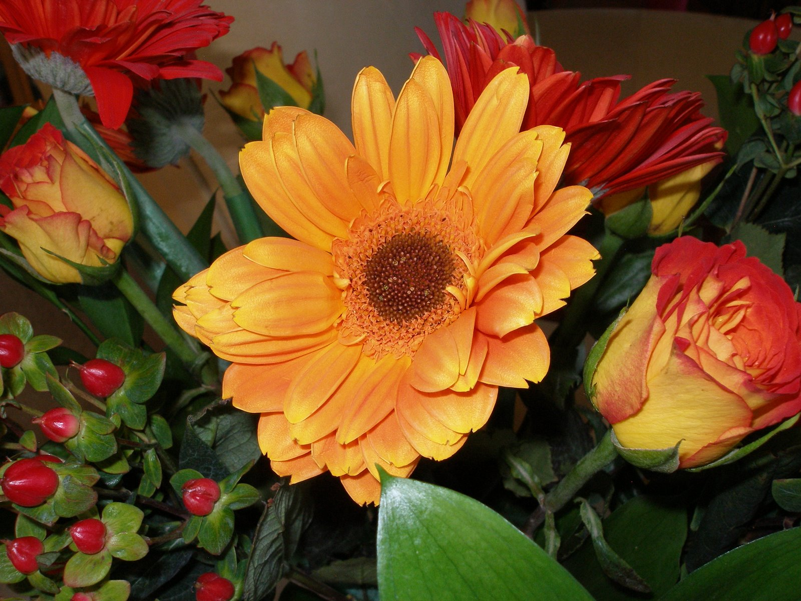 [Flowers+from+Teecie+Sept+20,+07+]