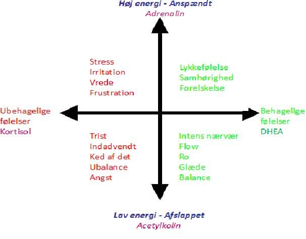 HeaRt Managment: Mental stress giver ubalance mellem kortisol og DHEA = kortere levetid