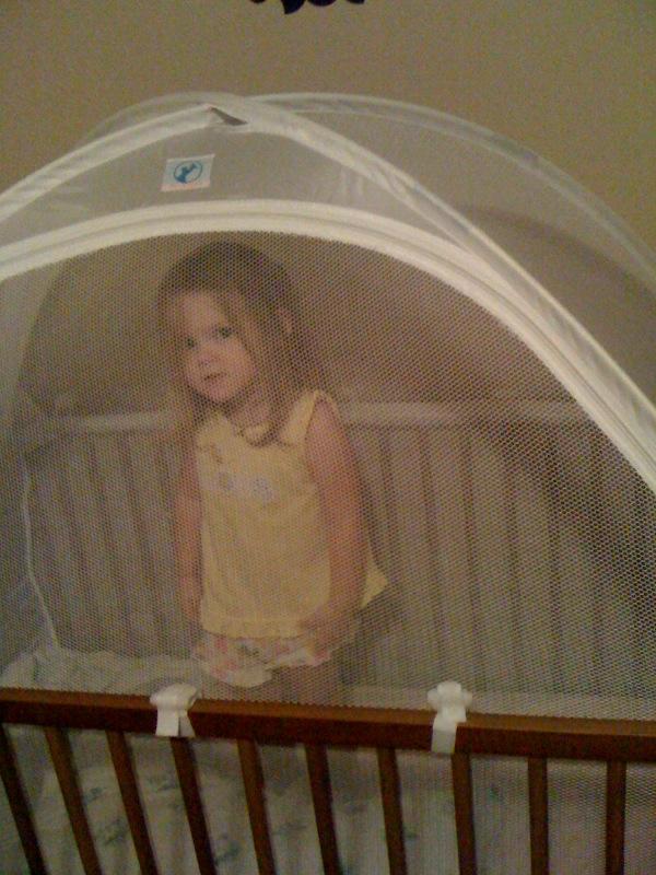 The Mcmillan Clan Megan S Crib Tent