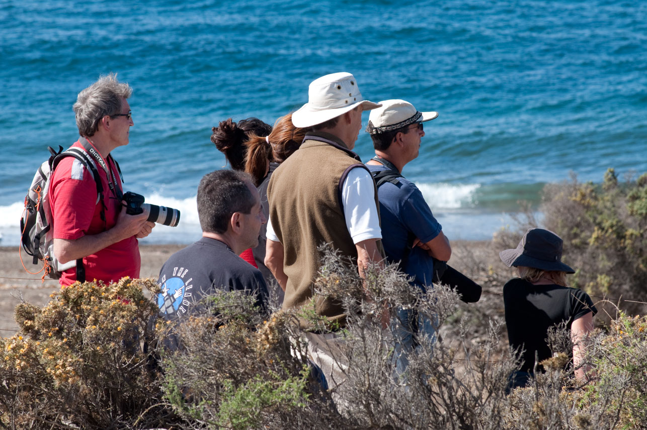 Fotógrafos y turistas a la espera de las Orcas en el Mirador de Punta Norte