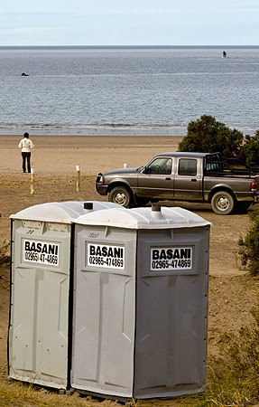 El doradillo Avistaje de Ballena costero en Península Valdés, cerca de Puerto Madryn, con baños quimicos