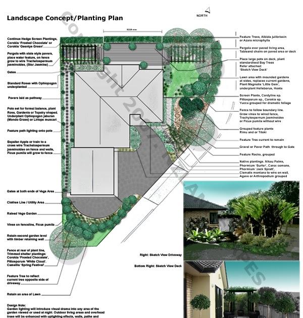 Landscape Planting / Concept Plan. New Zealand Garden ...