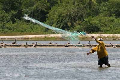 Garifuna Resistance Against Mega Tourism in Tela Bay NACLA