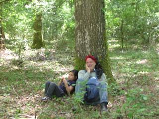 Risultati immagini per esperimento bioregionale