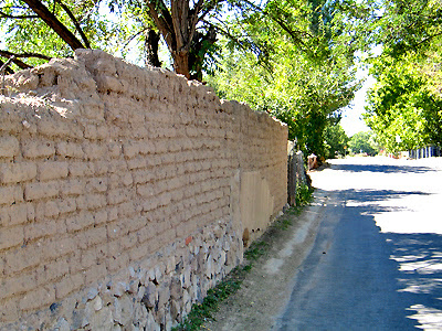 Adobe Wall - Mesilla