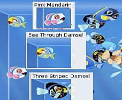 [happy-aquarium-peces.jpg]