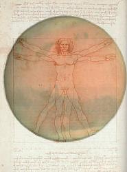 Hombre Da Vinci en Marte