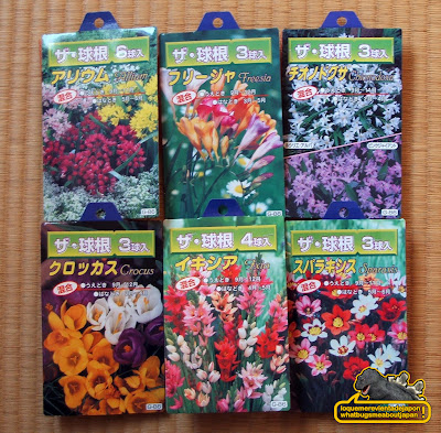 semillas del todo a cien japones