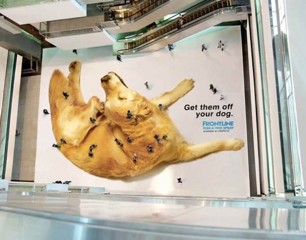 Shocking Ads10