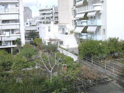 Ένας κήπος λιγότερος στη γειτονιά μας HPIM0140