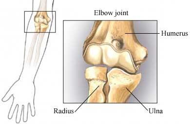 de lesiones en el basquet: