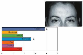 Sapere Audere La Morfologia Facial Influye En La Percepcion