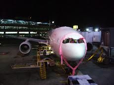 Air New Zealand Jet