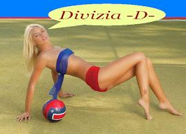 Divizia D