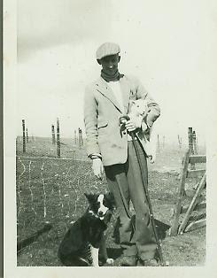 Dog And Crook Brambridge For Sale