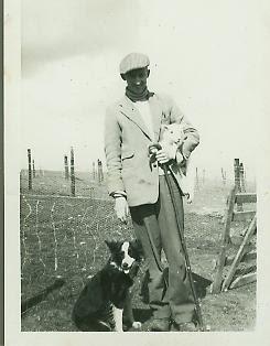 Dog Training Bangor Maine
