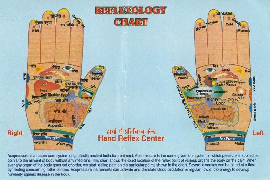Gadget गुरू's Mouthpiece: Reflexology Chart