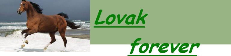 Lovak forever