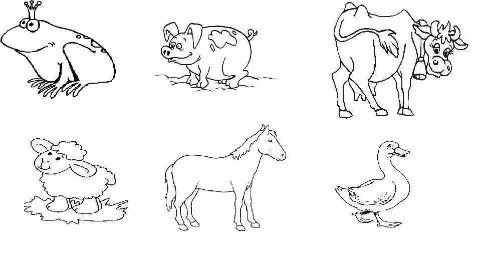 Dibujos De Animales Terrestres Para Colorear E Imprimir: Conjunto De Animales Terrestres Para Colorear