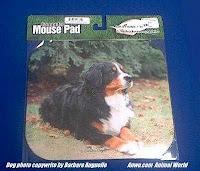 bernese mountain dog mousepad