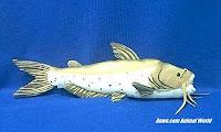 catfish fish plush stuffed animal toy