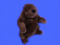 groundhog plush stuffed animal