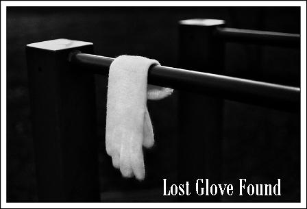 Lost Glove Found