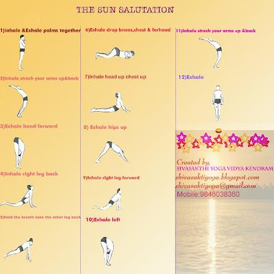 sivasakthi yogavidya kendram the sun salutation