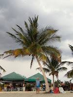 Avni - Ancon Plajı - Trinidad