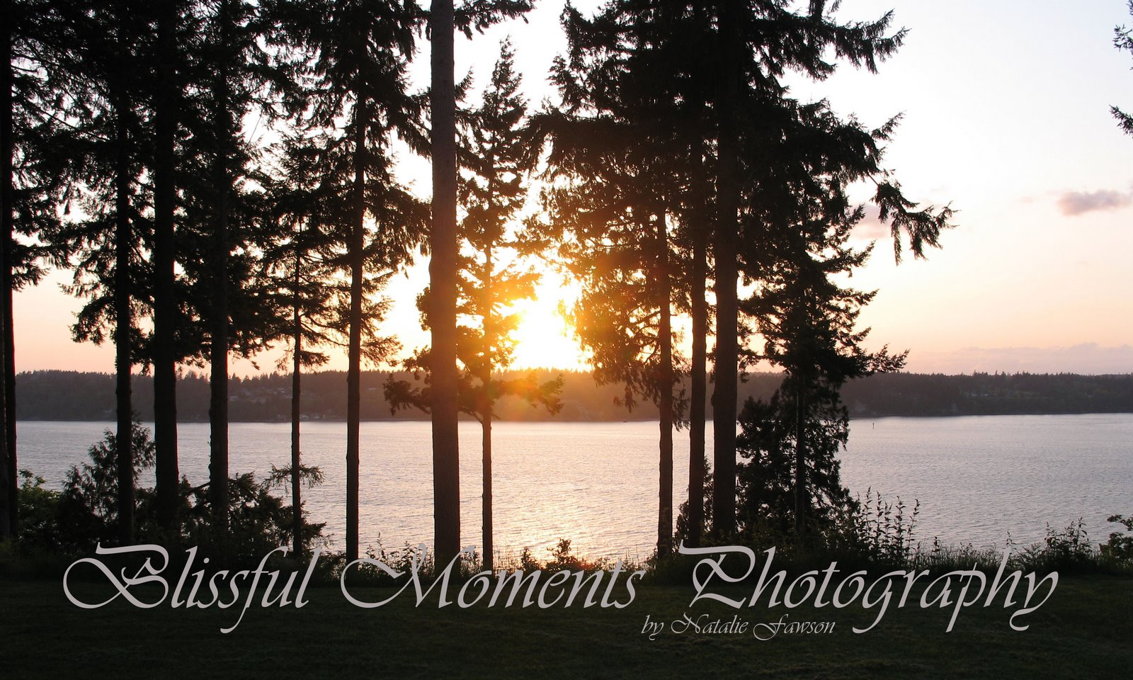 Blissful Moments Photography