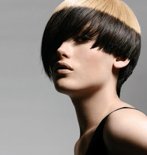 Short Bob Haircut With Gold anf Black Hairstyle 2010