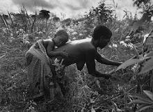 Imagens de África