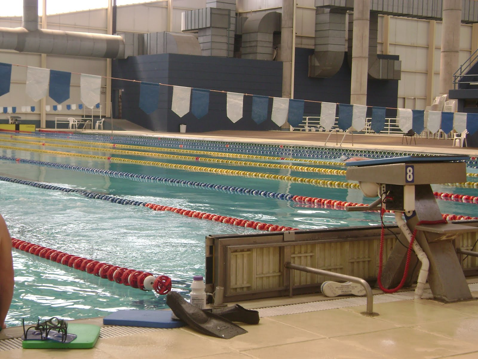 Choele nataci n master novedades del argentino master for Novedades del espectaculo argentino