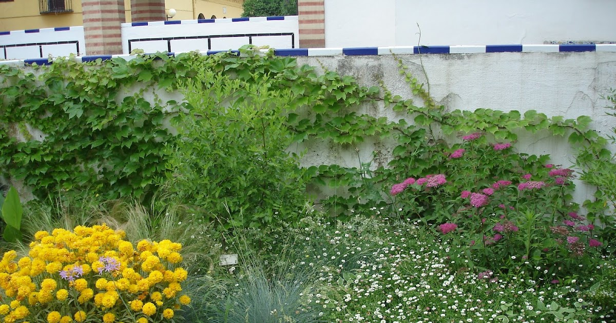 Escuela de jardiner a joaqu n romero murube analizando un for Escuela de jardineria