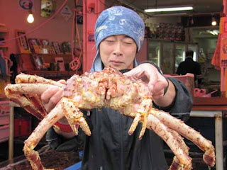 Crab Fish Market Hakodate Japan