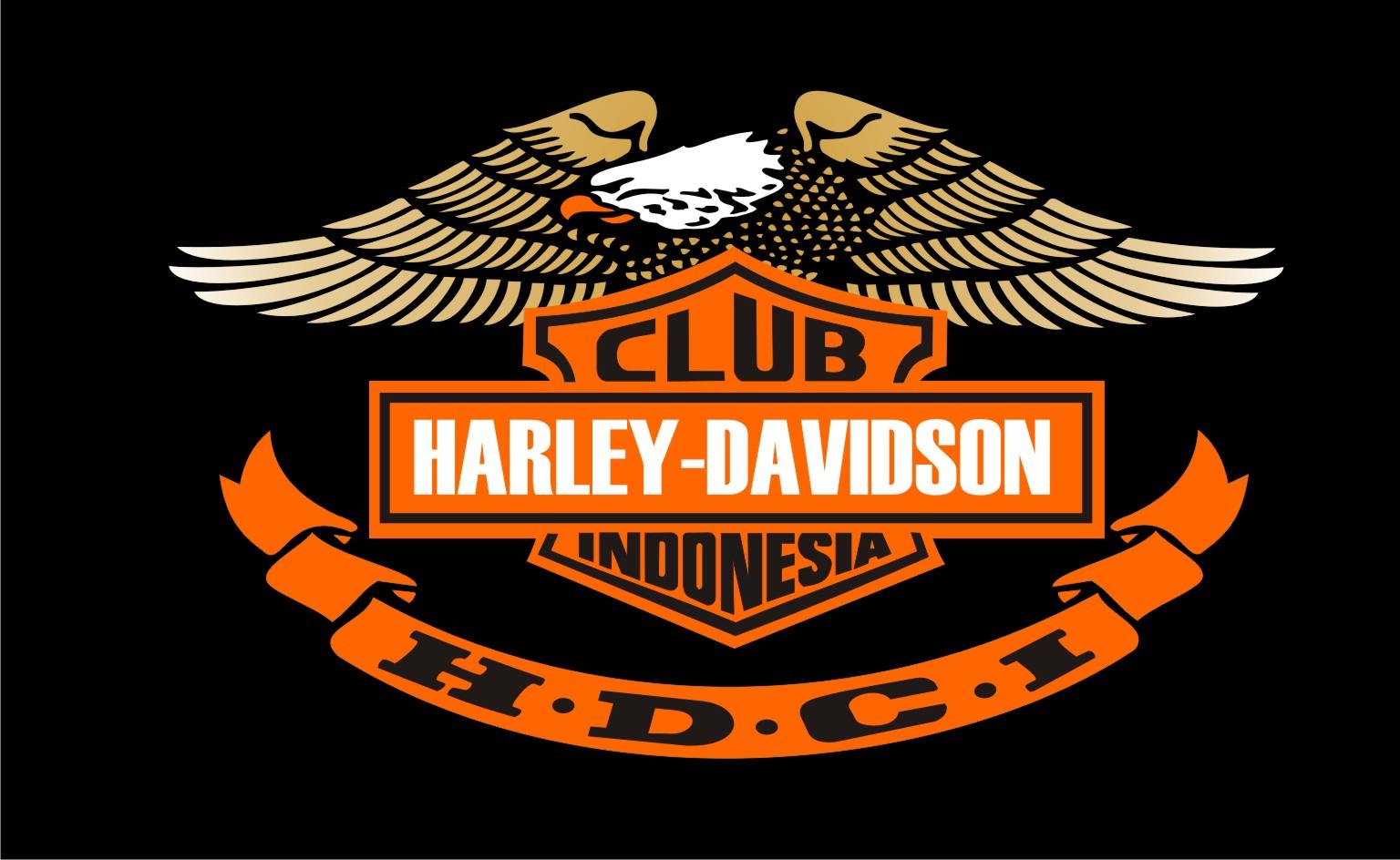 motorcycles: Harley Da...