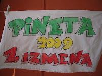 Skupine 1. izmena 2009