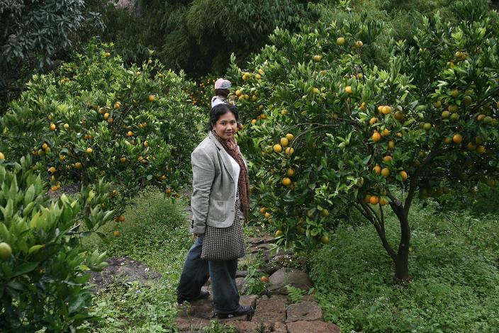 [Jenny+in+Sagada,+Lemon+Orchard,+Nov+2007]