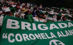 """BRIGADA 15 """"CORONELA ALANÍS"""""""