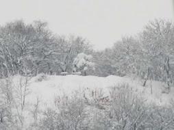 Panorama innevato e nebbioso