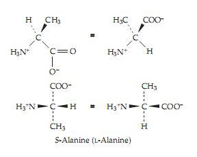 biochemistry: августа 2010