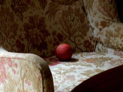 Riposare e ragionare (rospe, 2006)
