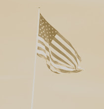 Flag in Sepia
