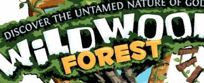 VBS Programs: Wildwood Forest - Sharefaith Magazine