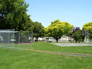 ニュージーランド 芝刈り