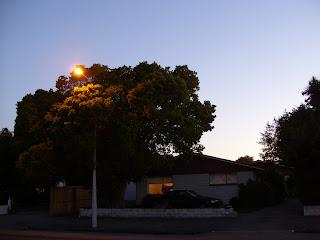 ニュージーランド クライストチャーチ夕焼け写真