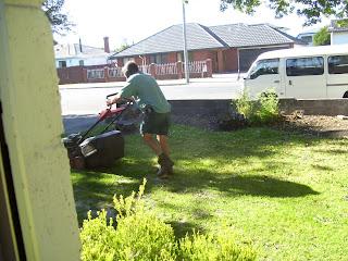 ニュージーランド 芝刈り 写真 画像
