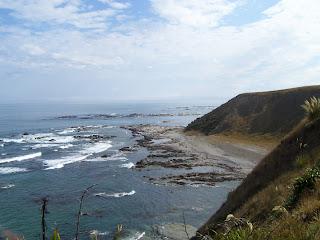 ニュージーランド クライストチャーチ カイコウラ 写真 画像